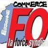 logo_fo-commerce-91